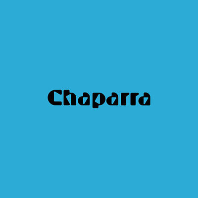 Royalty-Free and Rights-Managed Images - Chaparra by TintoDesigns