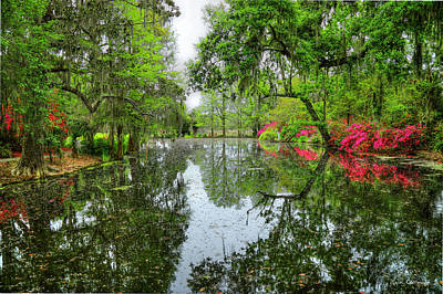 Ballerina Art - Charleston SC Magnolia Plantation Reflections Landscape Art by Reid Callaway