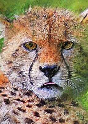 Digital Art - Cheetah Wild Cat #cheetah by Justyna Jaszke JBJart