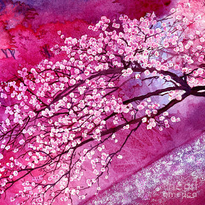 Celebrity Watercolors - Cherry Blossoms by Hailey E Herrera