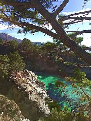 Royalty-Free and Rights-Managed Images - China Cove trail Point Lobos by Luisa Millicent
