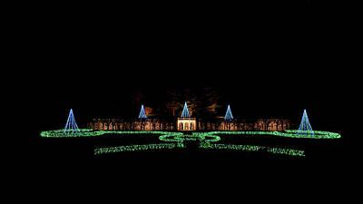 Photograph - Christmas Tree Lights by Louis Dallara
