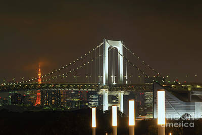 Winter Animals Rights Managed Images - Cityscape of Tokyo at night Royalty-Free Image by Kiran Joshi