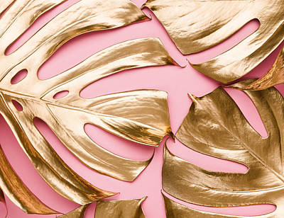 Royalty-Free and Rights-Managed Images - Closeup view of natural gold painted monstera tropical leaves pattern on pastel pink background. Beauty fashion concept.  by Julien