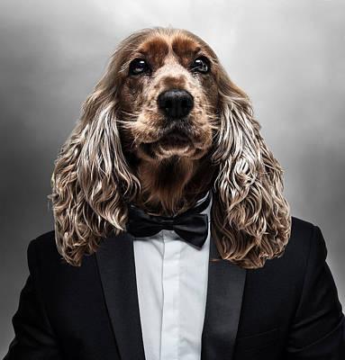 Surrealism Digital Art - Cocker Spaniel Dog in Tuxedo Surreal by Barroa Artworks