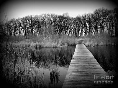 Moody Trees - Cold Day at the Water - Holga Effect by Frank J Casella