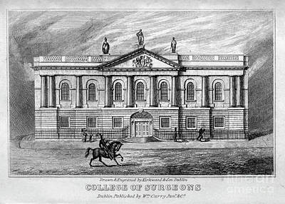 Animals Drawings - COLLEGE OF SURGEONS, Dublin h1 by Historic illustrations