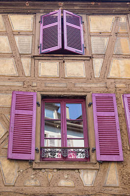 Science Collection - Colmar Window 03 by Teresa Mucha