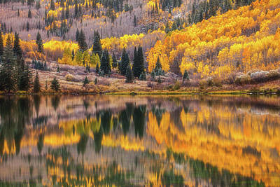 Royalty-Free and Rights-Managed Images - Colorado Reflections by Darren White