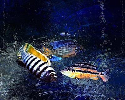 Vintage Signs - Colorful African Cichlids by Scott Wallace Digital Designs