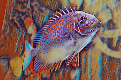 Fireworks - Colorful Fish Art by Selena Lorraine