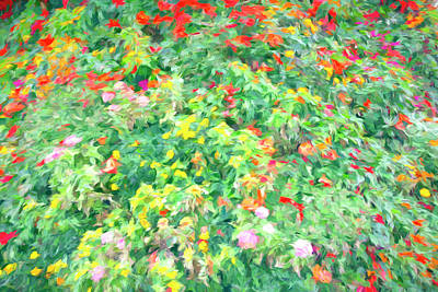 Uncle Sam Posters - Colorful Garden Abstract by Francis Sullivan