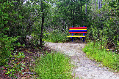 Abstract Stripe Patterns - Colorful Park Bench on the Tideland Trail by Bob Decker