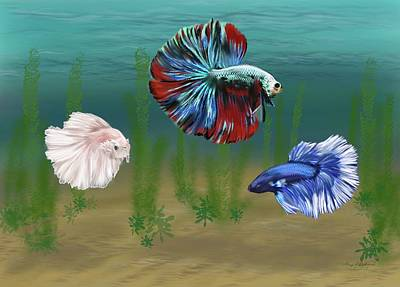 Kitchen Mark Rogan - Colorful Tropical Betta Fish by Gary F Richards