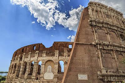 Reptiles - Colosseum in Rome, Italy by Fabiano Di Paolo