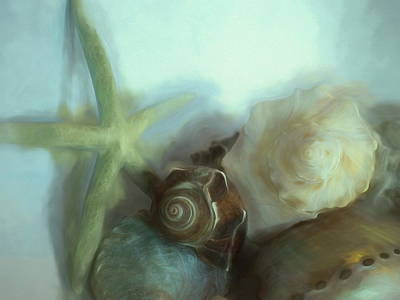 Mixed Media Royalty Free Images - Conches Underwater 3 Royalty-Free Image by Lynda Lehmann