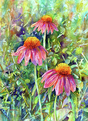 Royalty-Free and Rights-Managed Images - Coneflower Trio-pastel colors by Hailey E Herrera