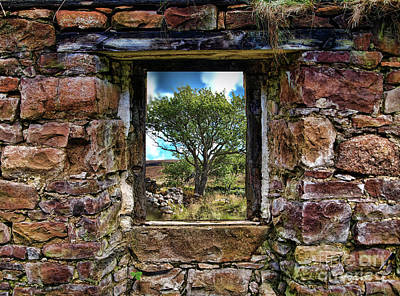 Photograph - Cottage Window by Dave Harnetty