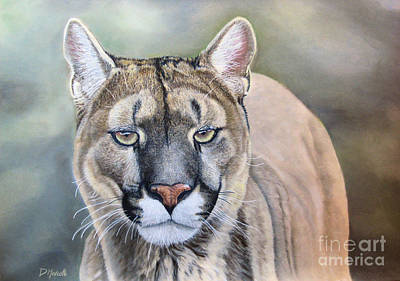 Painting - Cougar by Diane Marcotte