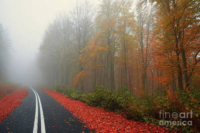 Pittsburgh According To Ron Magnes - Countryside road with fall foliage tree in the mist by Athina Psoma