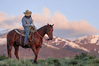 Animals Royalty-Free and Rights-Managed Images - Cowboy in the mountains 02 by Murray Rudd