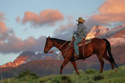 Animals Royalty-Free and Rights-Managed Images - Cowboy in the mountains by Murray Rudd