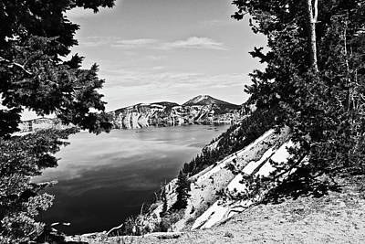 Animal Surreal - Crater Lake Oregon B and W 06 23 20 by Joyce Dickens