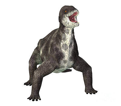 Bath Time - Criocephalosaurus Dinosaur on White by Corey Ford