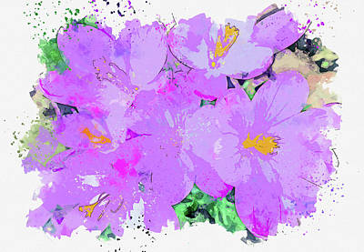 Royalty-Free and Rights-Managed Images - Crocus, watercolor, by Ahmet Asar by Celestial Images