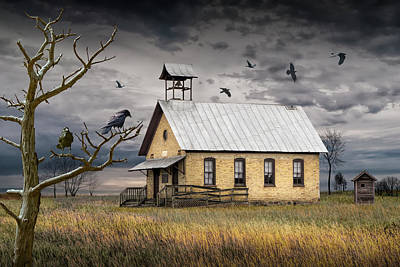 Venice Beach Bungalow - Crows and Ravens Hovering over an Old Vacant One Room Country Sc by Randall Nyhof