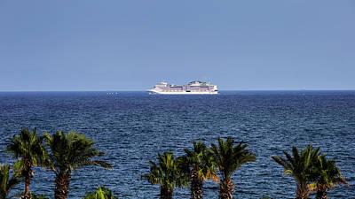 Animal Portraits - Cruising In The Mediterranean  by David Pyatt