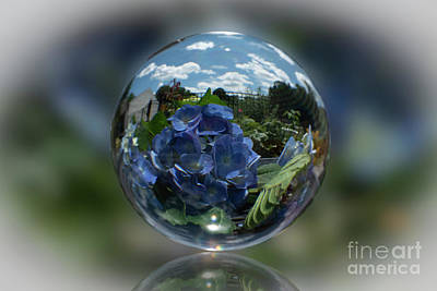 Design Pics - Crystal Ball Series-nikko Blue Hydrangea by Judy Wolinsky
