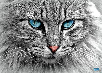 Fantasy Royalty-Free and Rights-Managed Images - Cutie Pie Chronicles C1N2 - Hi There, My Name Is Sapphire L A S  by Gert J Rheeders