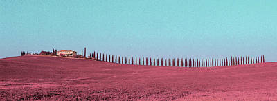 Surrealism Royalty-Free and Rights-Managed Images - Cypresses - Surreal Art by Ahmet Asar by Celestial Images