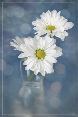 Pineapple - Daisies in a Glass Vase by Teresa Wilson