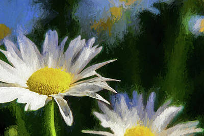 Landscape Photos Chad Dutson - Daisy, Daisy by Peter Tellone