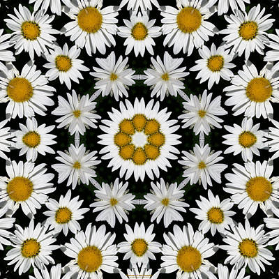Digital Art - Dance of the Daisies by Brian Gryphon
