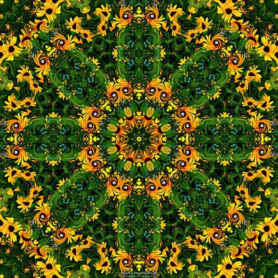 Digital Art - Dance of the Rudbeckia by Brian Gryphon