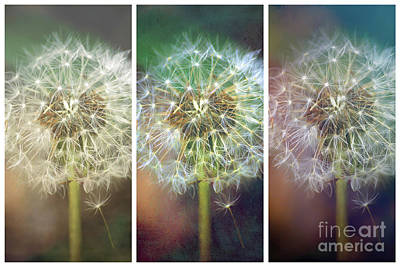 Route 66 - Dandelion Dreams - Collage by Kerri Farley
