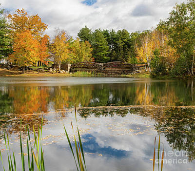 On Trend At The Pool - Dazzling Fall Colors, Lincoln Woods State Park Providence Rhode Island by Wayne Moran