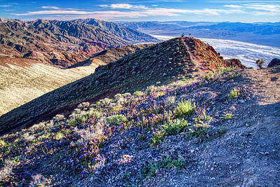 Vintage Presidential Portraits - Death Valley at spring by Tatiana Travelways