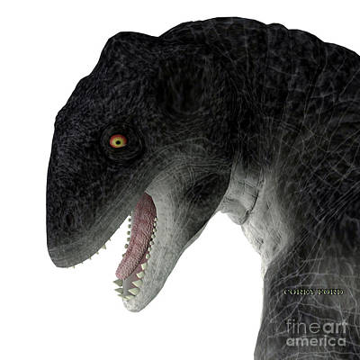Vintage Movie Stars Royalty Free Images - Delphinognathus Synapsid Head Royalty-Free Image by Corey Ford