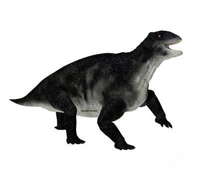 Vintage Movie Stars Royalty Free Images - Delphinognathus Synapsid Side Profile Royalty-Free Image by Corey Ford