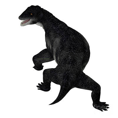 Vintage Movie Stars Royalty Free Images - Delphinognathus Synapsid Tail Royalty-Free Image by Corey Ford