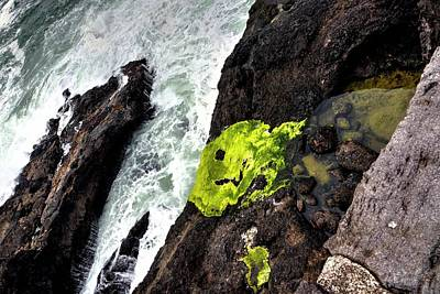 Jerry Sodorff Royalty-Free and Rights-Managed Images - Depoe Bay Rocks Surf Tide Pool 2 by Jerry Sodorff