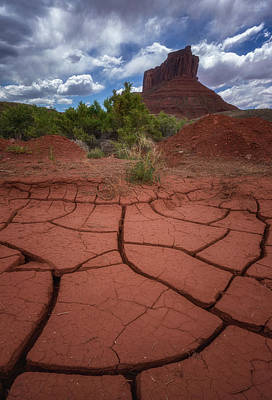 Royalty-Free and Rights-Managed Images - Desert Drought by Darren White