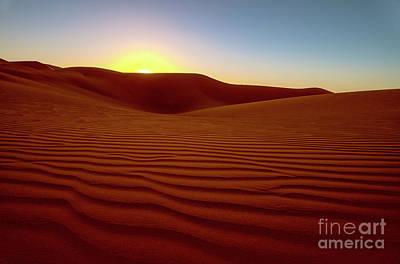 Photograph - Desert Sunset by Jennifer Magallon
