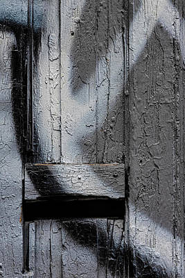 Animal Portraits - Detail of Graffitied Wall with Cracked Paint by Robert Ullmann