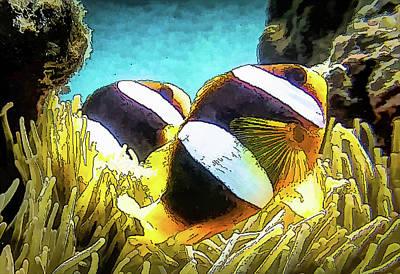 Photograph - DiveArt - 'Nemo' Clown Fish Couple by Ifototravel - Irene And Tony Isaacson