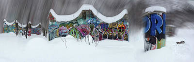 Winter Animals - Dog in a Skate Park by Wayne King